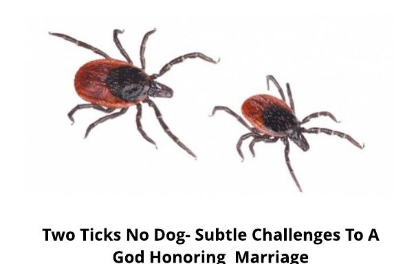 two-ticks-no-dog-subtle-challenges-to-a-god-honoring-marriage-1